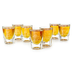 7 Deadly Sins Etched Shot Glasses..