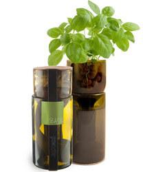 Grow Bottle Upcycled Hydrogarden Kit