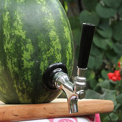 Deluxe Watermelon Tap Kit