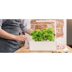 Smart Herb Garden Starter Kit