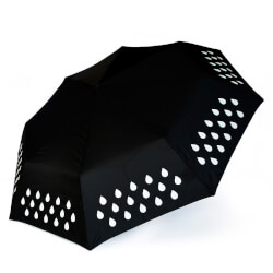 Color Change Umbrella