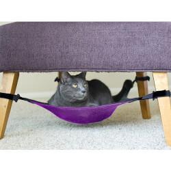 Cat Crib: Hammock Lounger Purple