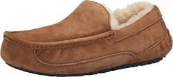 Ugg Mens Ascot Slippers
